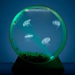 jellyfishart